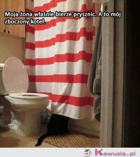 Kote�