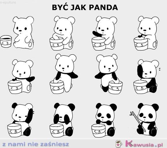 Być jak panda