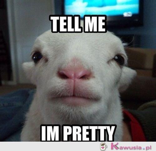 Powiedz mi, że jestem ładna