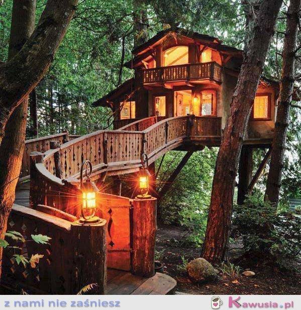 Świetny domek na drzewie