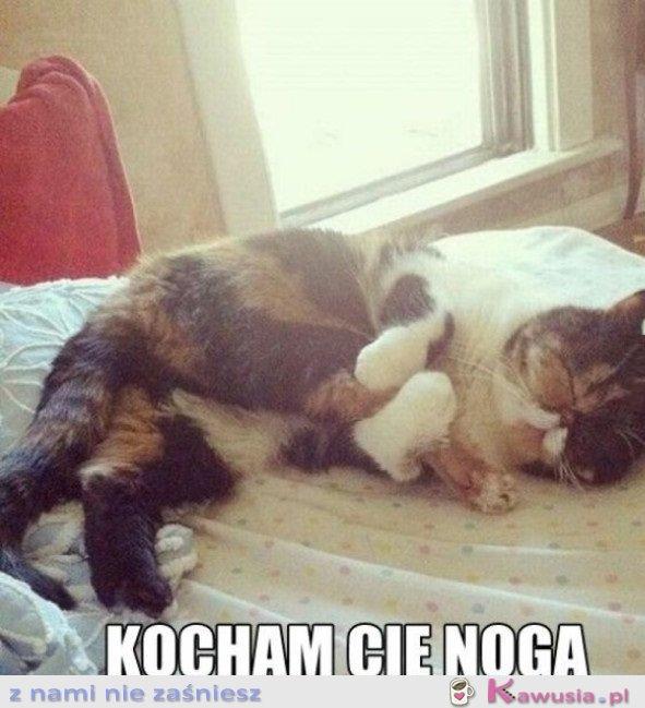KOCHAM CIĘ NOGO