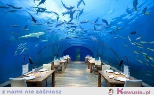 Niesamowita restauracja