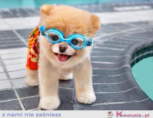 Kto idzie pływać