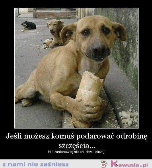 Jeśli możesz komuś podarować...