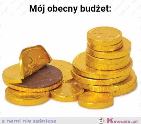 Mój obecny budżet