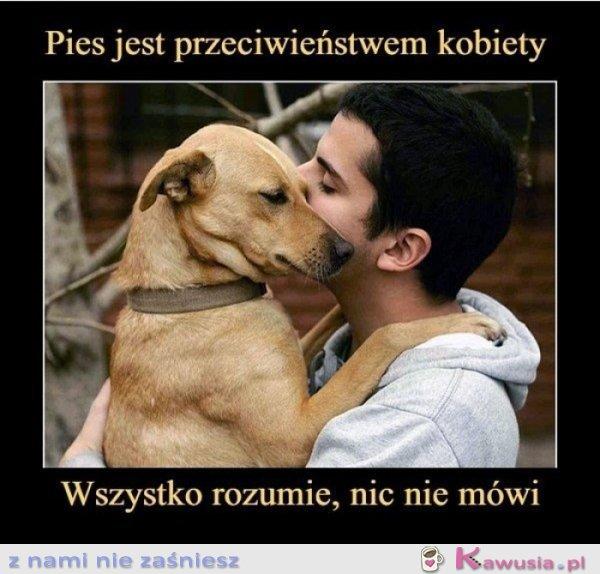 Pies jest przeciwieństwem kobiety